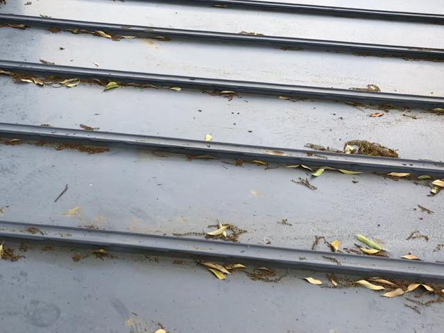 屋根に葉っぱが落ちている