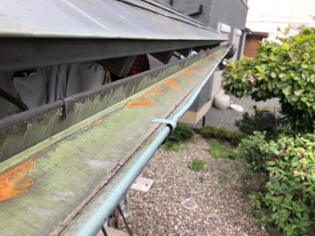 雨樋に藻とサビ
