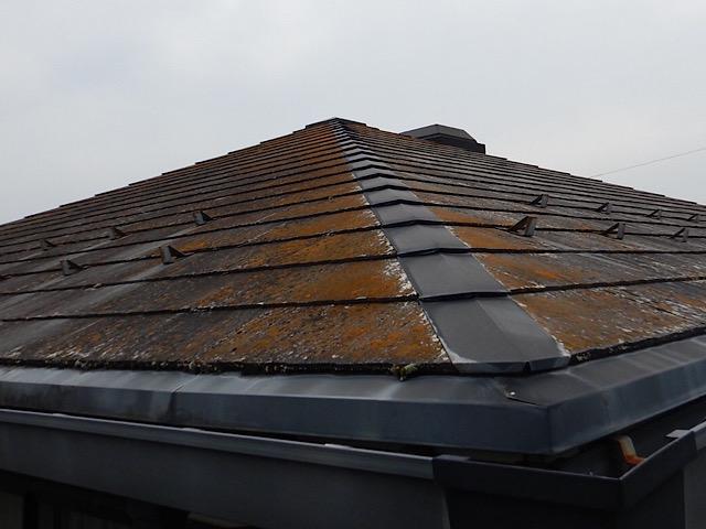 大量にコケが生えたスレート屋根