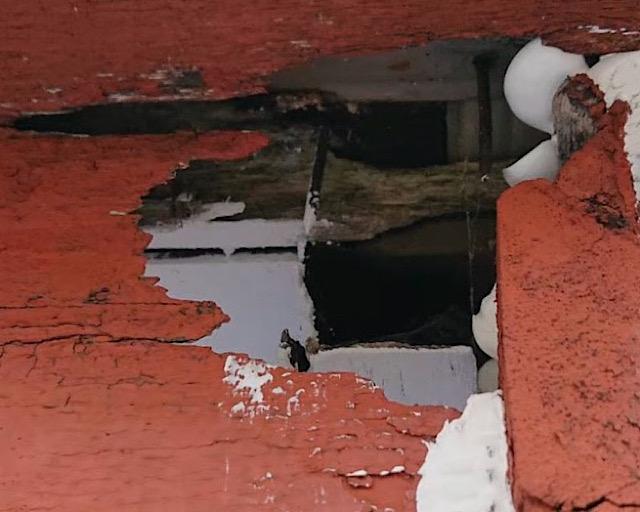 雨樋近くの腐った箇所