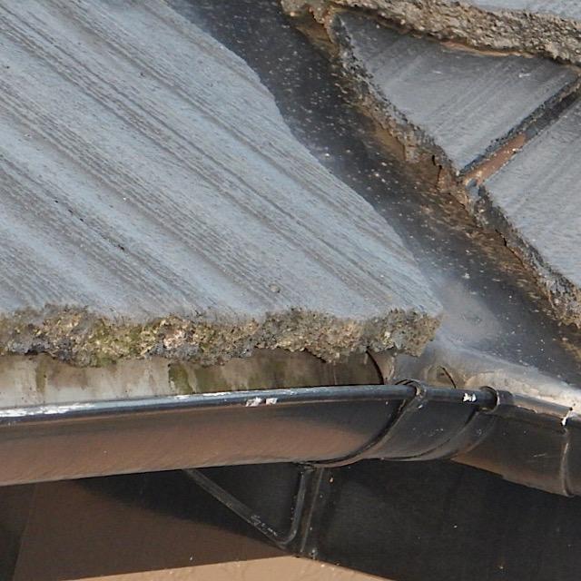 屋根が劣化して藻が生えている現場