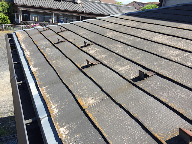 カラーベストの屋根に藻が生え始めている様子