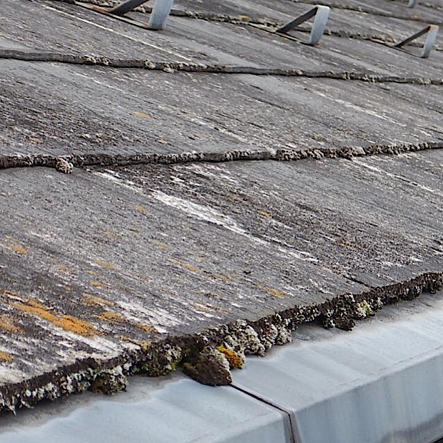 屋根が劣化して藻が生えてる状態