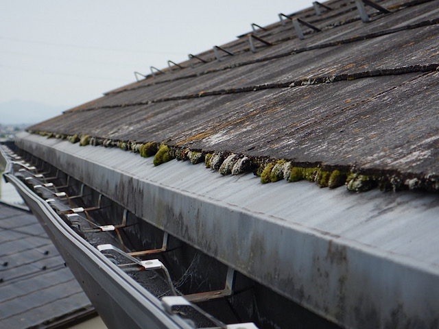 コケがたくさん生えたスレート屋根