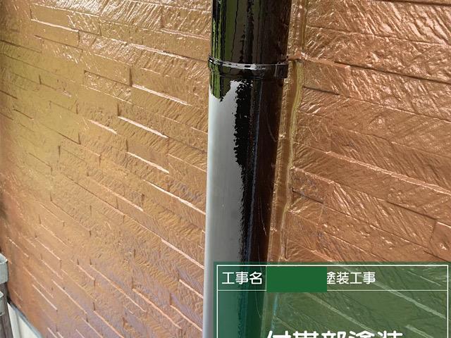雨樋塗装一回目