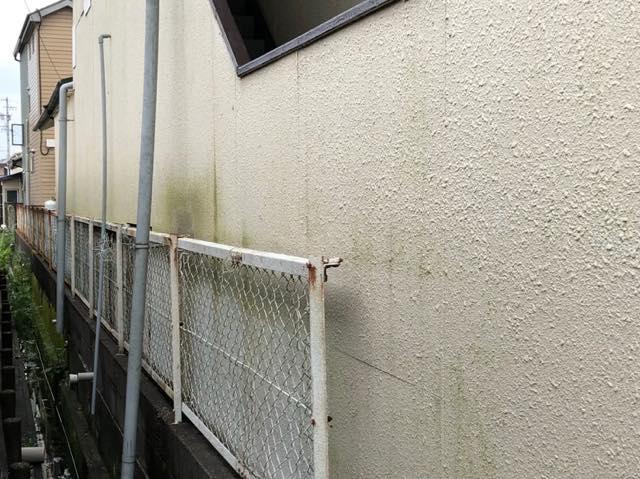 カビが生えている外壁