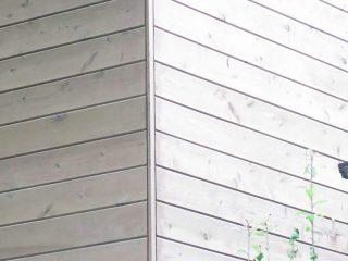 外壁種類 羽目板