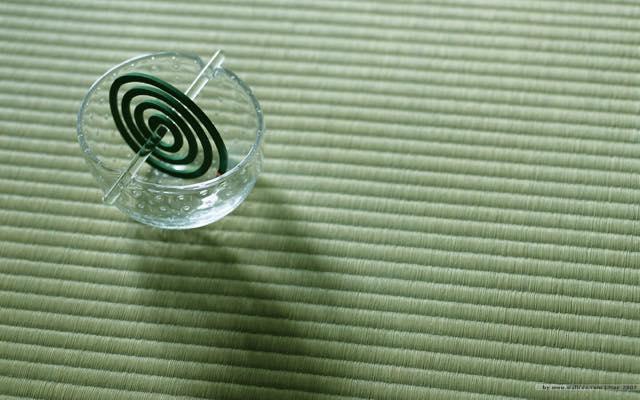畳と蚊取り線香
