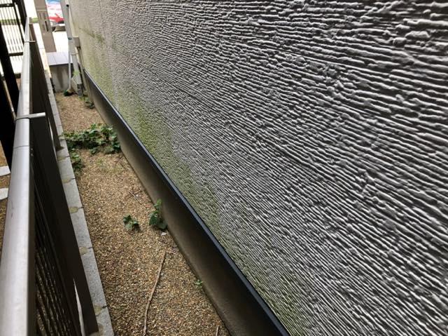 サイディングの壁